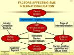 factors affecting sme internationalisation