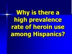 why is there a high prevalence rate of heroin use among hispanics