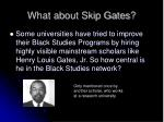 what about skip gates