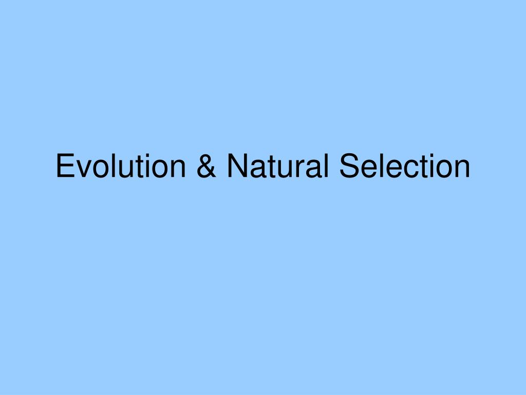 evolution natural selection l.