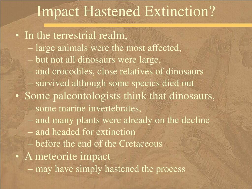 Impact Hastened Extinction?