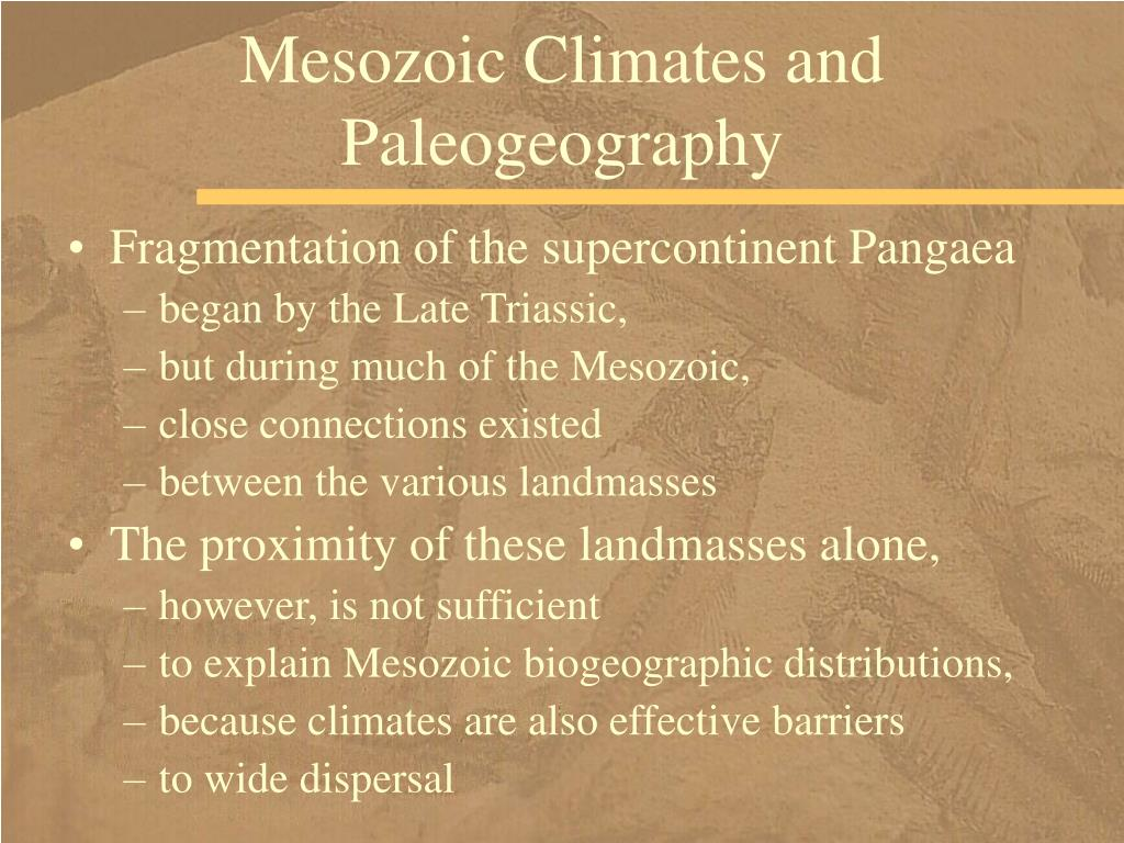 Mesozoic Climates and Paleogeography