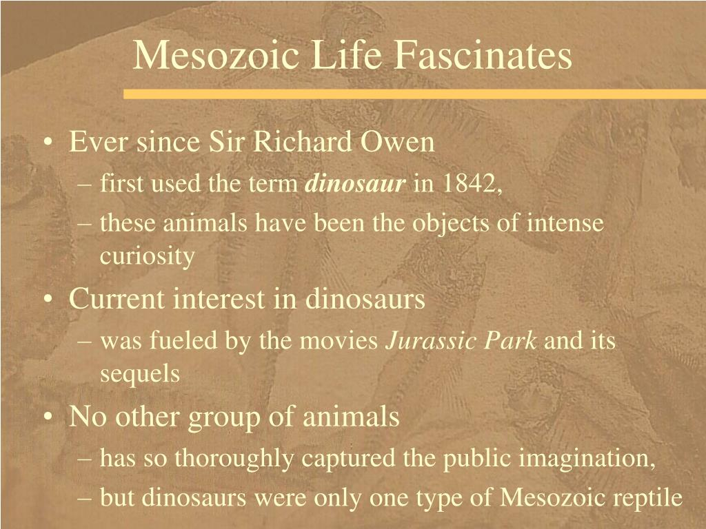 Mesozoic Life Fascinates