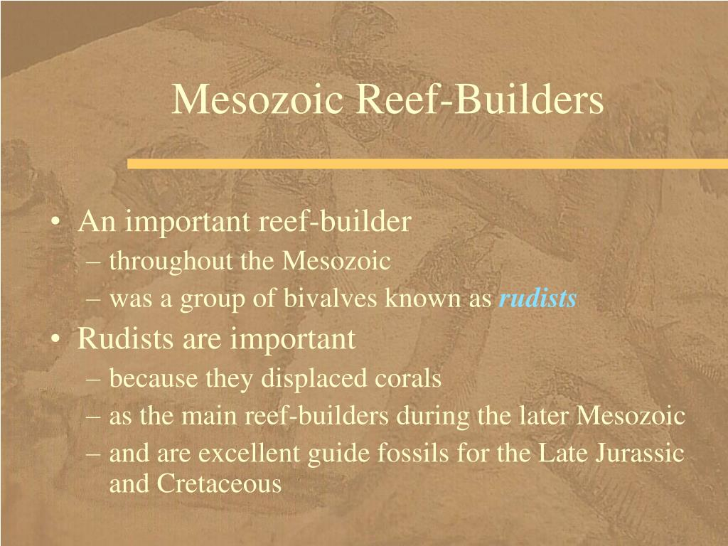 Mesozoic Reef-Builders