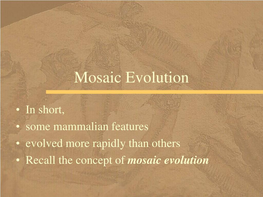 Mosaic Evolution