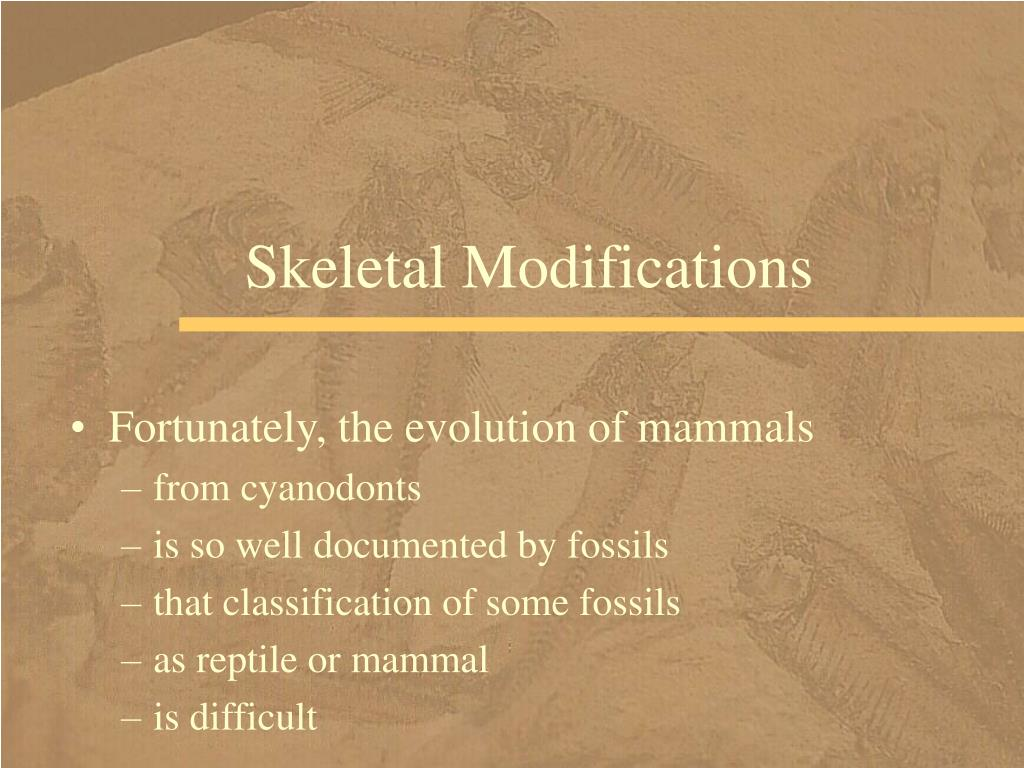 Skeletal Modifications