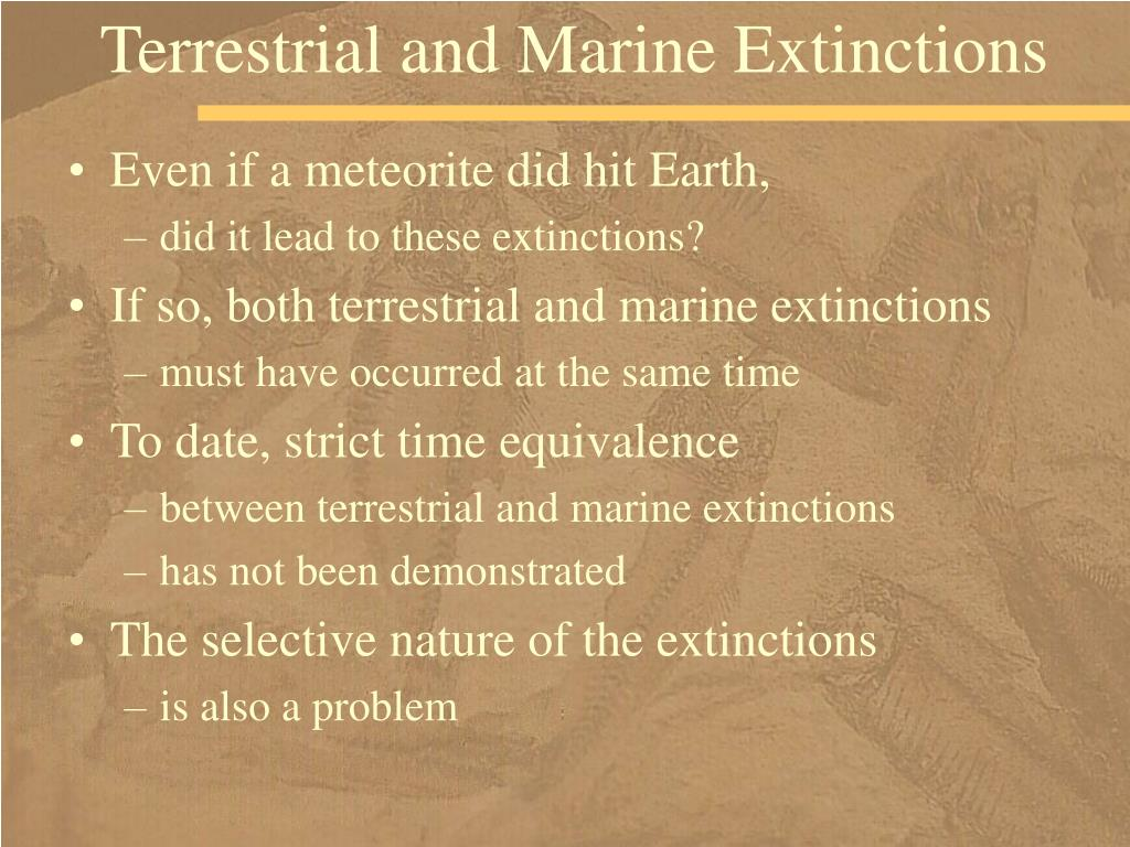 Terrestrial and Marine Extinctions