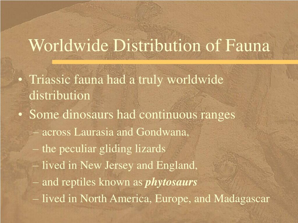 Worldwide Distribution of Fauna