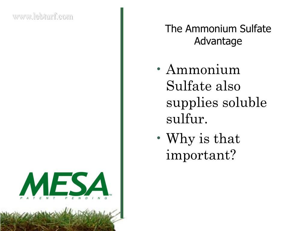 Ammonium Sulfate also supplies soluble sulfur.