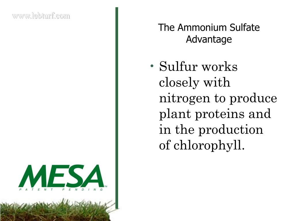 Sulfur works closely with nitrogen to produce plant proteins and in the production of chlorophyll.