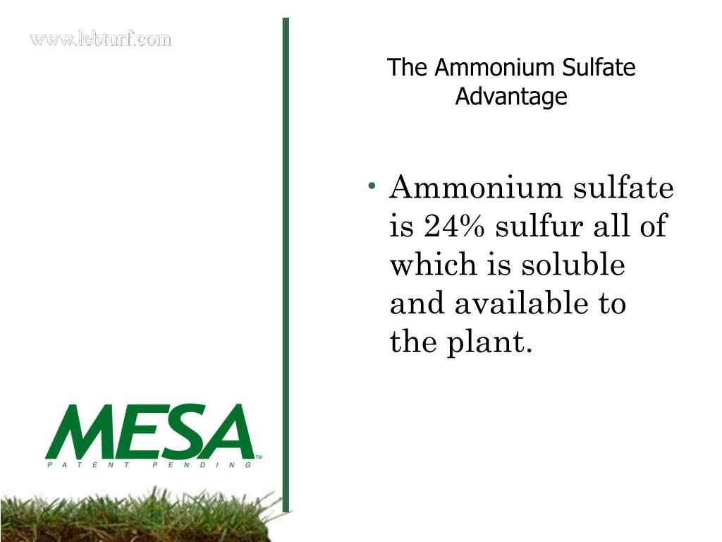 Ammonium sulfate is 24% sulfur all of which is soluble and available to the plant.