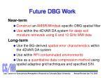 future dbg work