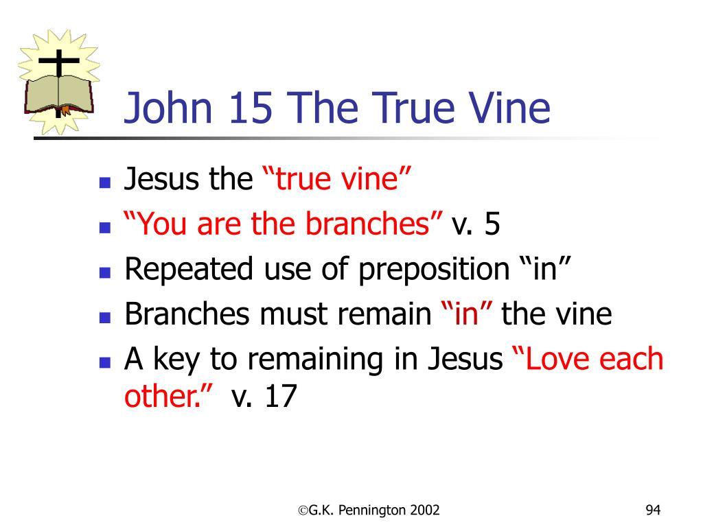 John 15 The True Vine