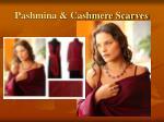 pashmina cashmere scarves