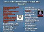 local public health issues after any disaster