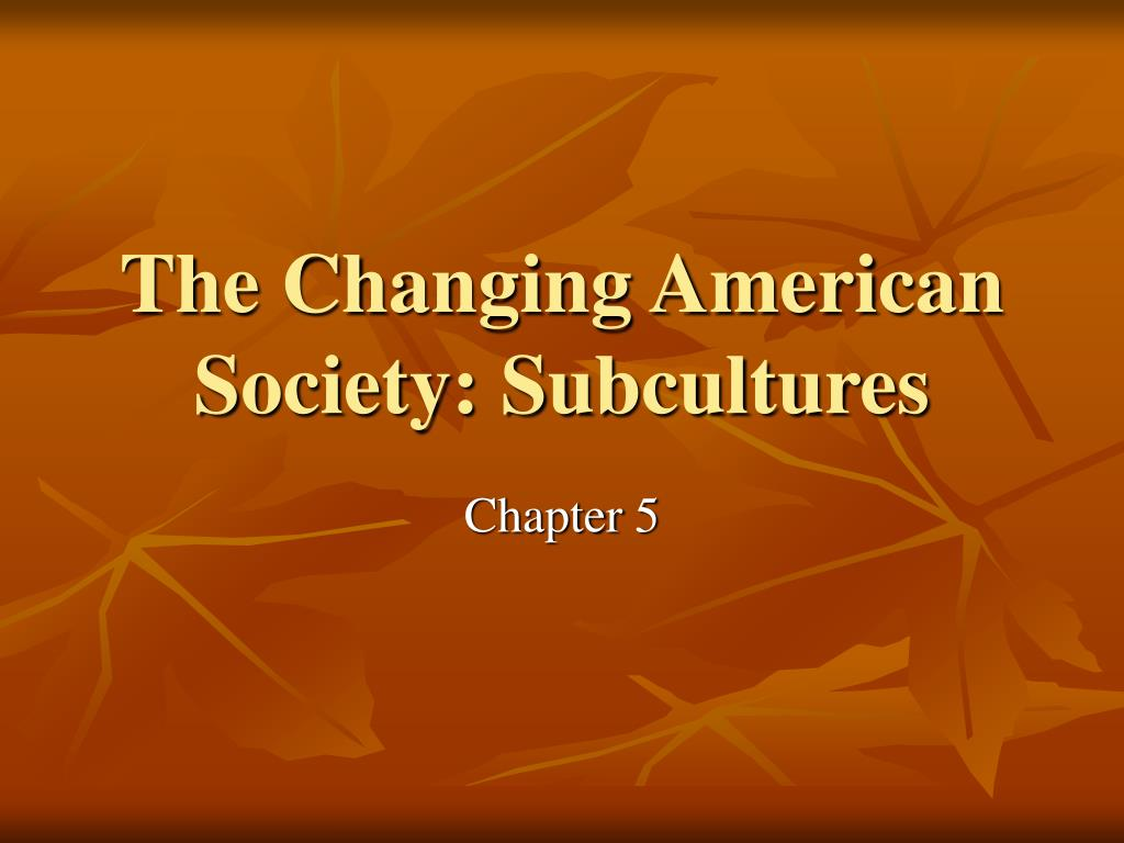 the changing american society subcultures l.