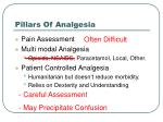 pillars of analgesia