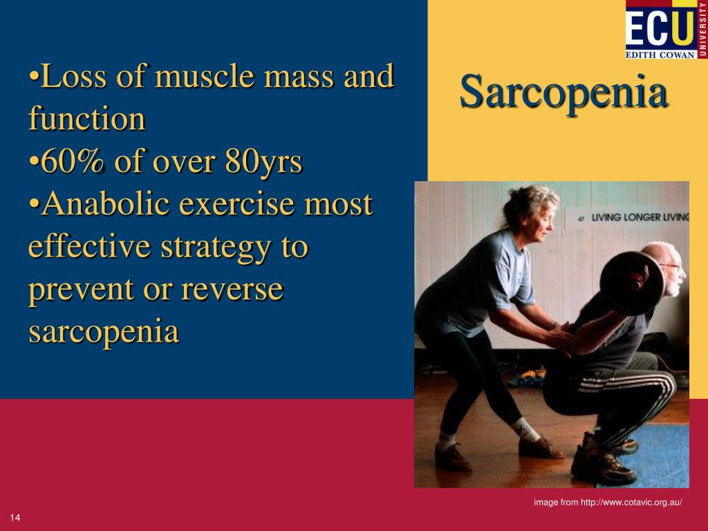 Loss of muscle mass and function
