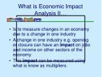 what is economic impact analysis ii