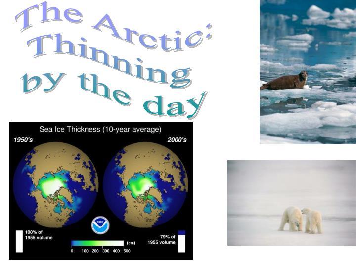 The Arctic: