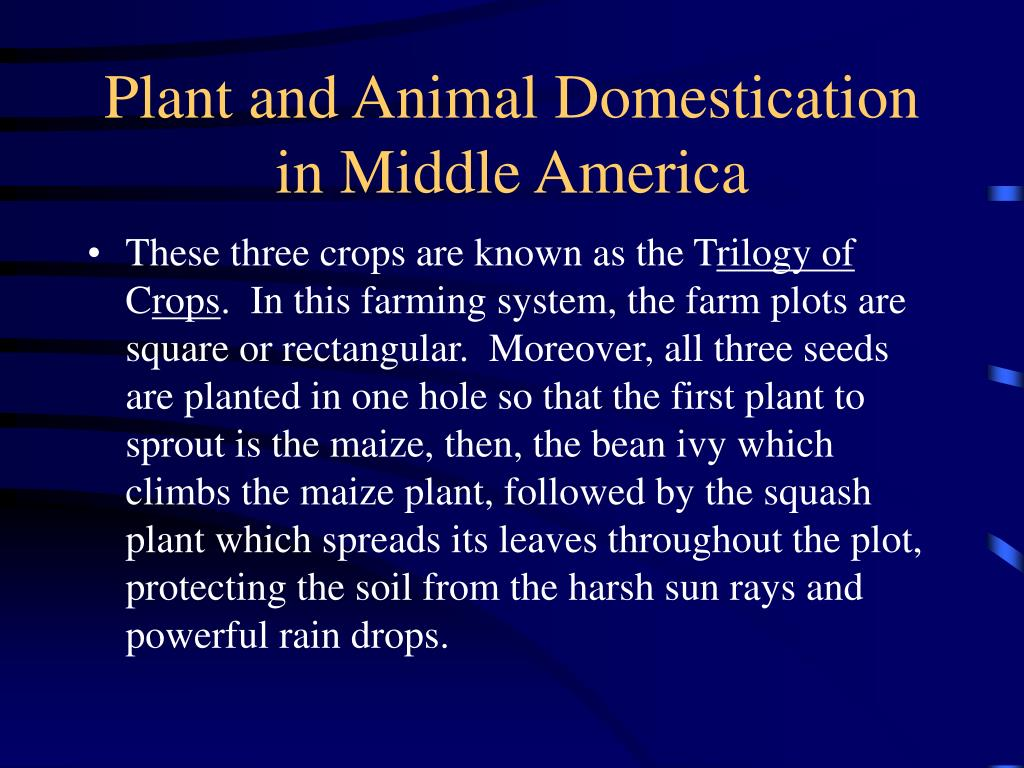 Plant and Animal Domestication in Middle America