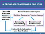 a program framework for iort
