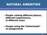 natural amenities43