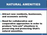 natural amenities44