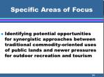 specific areas of focus34