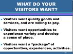 what do your visitors want
