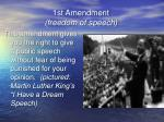 1st amendment freedom of speech