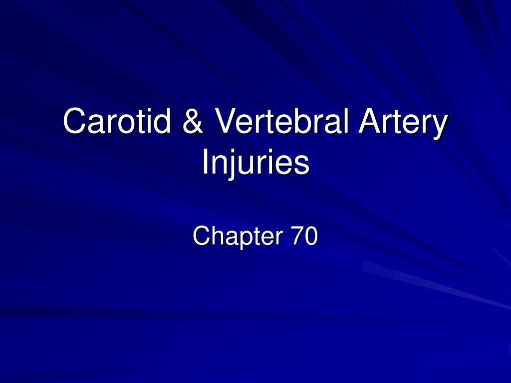 carotid vertebral artery injuries l.