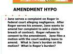 amendment hypo