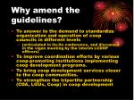 why amend the guidelines