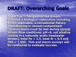 draft overarching goals