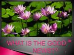 what is the good news 3
