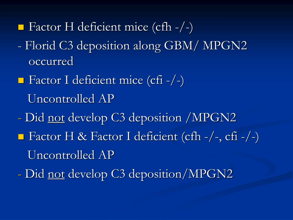Factor H deficient mice (cfh -/-)