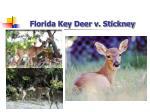 florida key deer v stickney