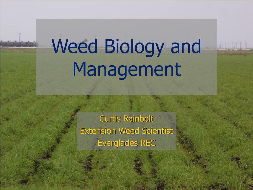weed biology and management l.