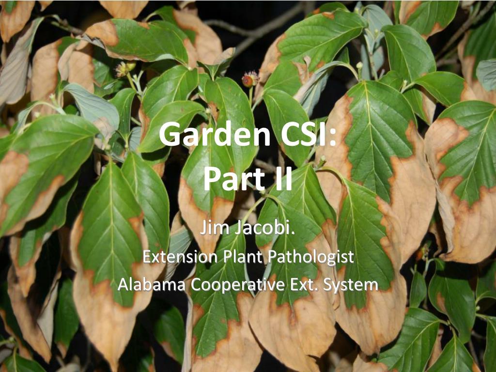Garden CSI: