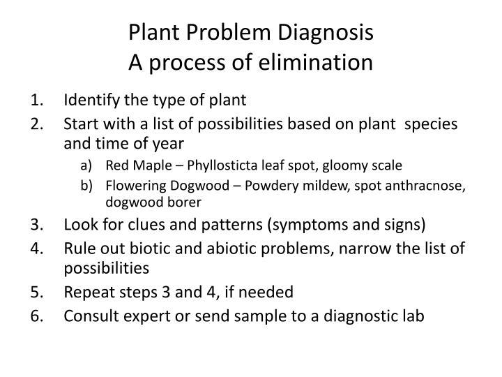 Plant problem diagnosis a process of elimination