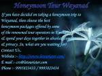 honeymoon tour wayanad