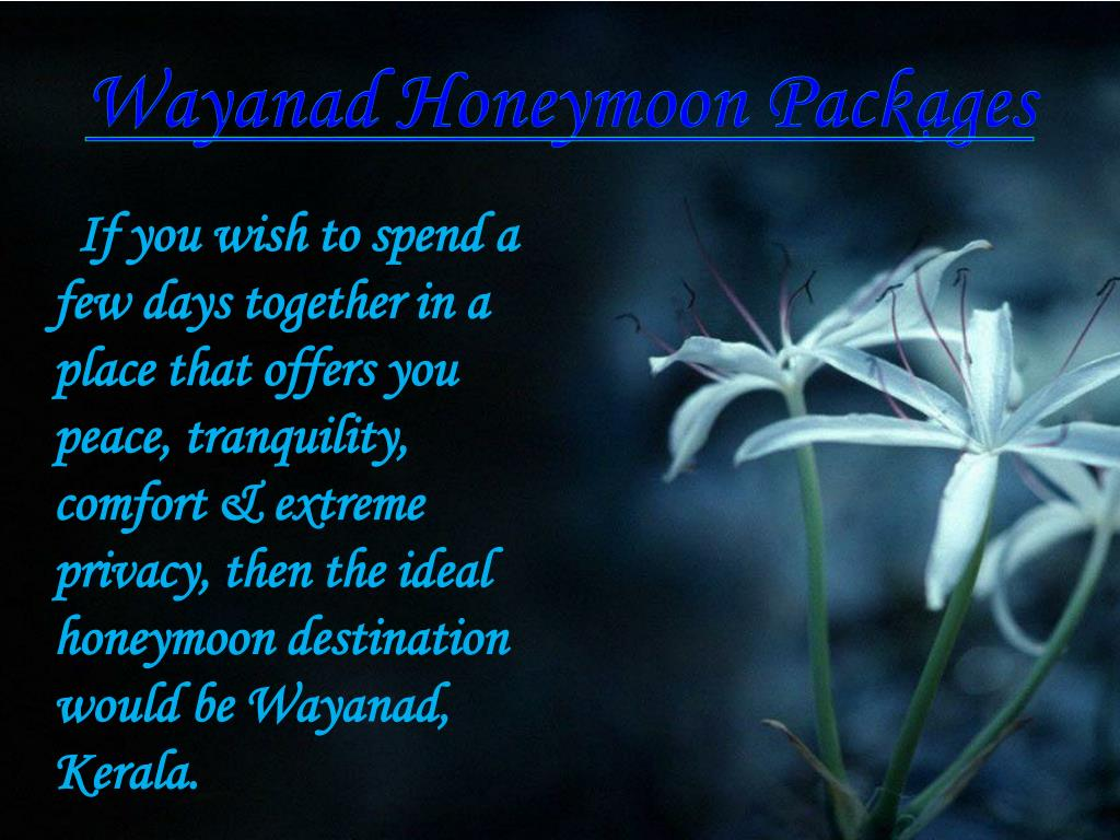 wayanad honeymoon packages l.