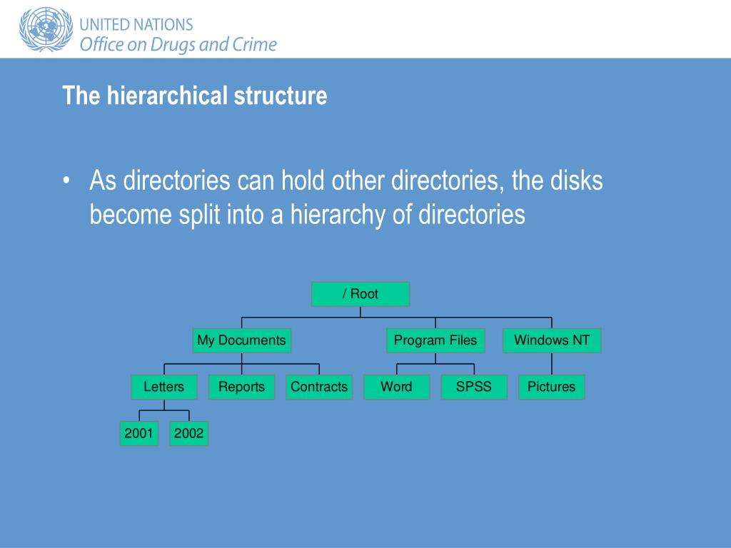 The hierarchical structure