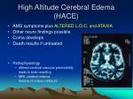 high altitude cerebral edema hace