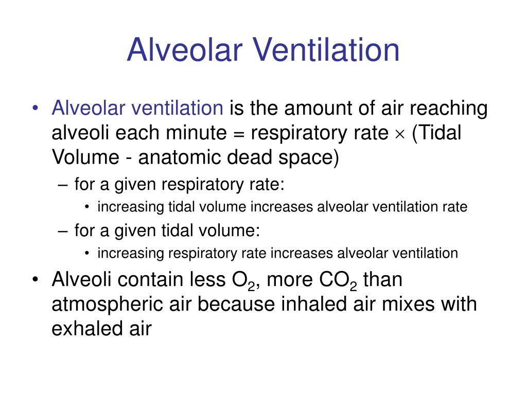 Alveolar Ventilation
