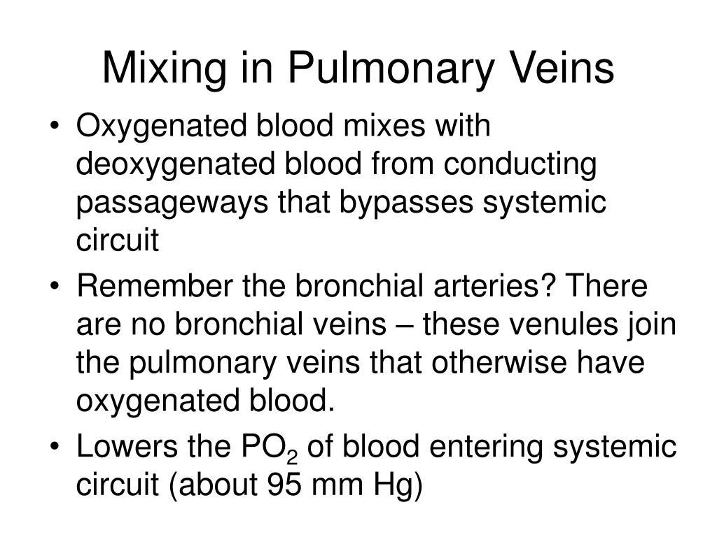 Mixing in Pulmonary Veins