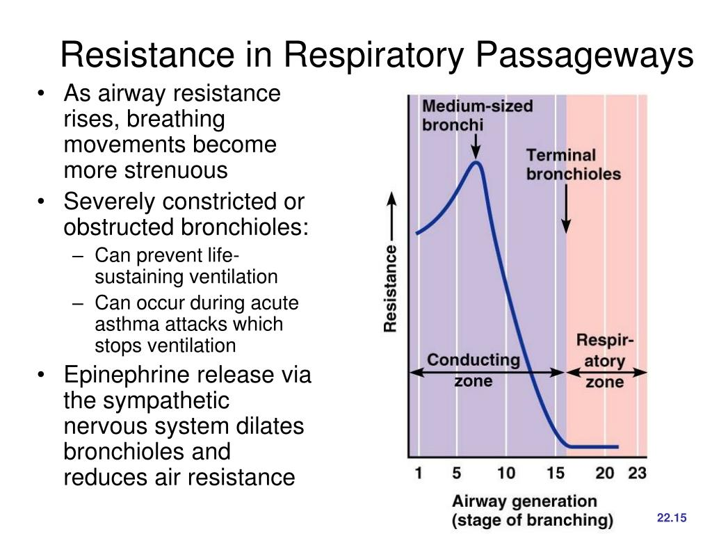Resistance in Respiratory Passageways