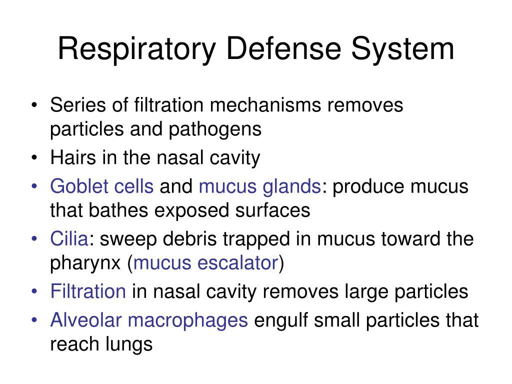 Respiratory Defense System