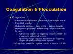 coagulation flocculation1